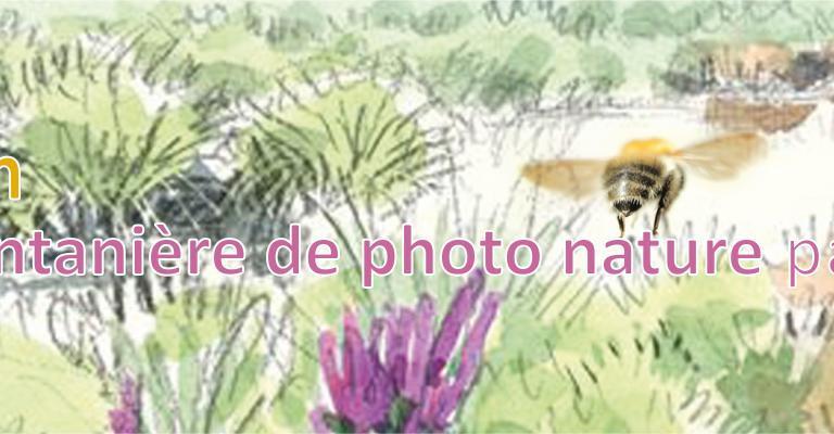 """Balade printanière de photo nature - Exposition Zone Ramsar """"Étangs de Champagne humide"""" - EPTB Seine Grands Lacs"""