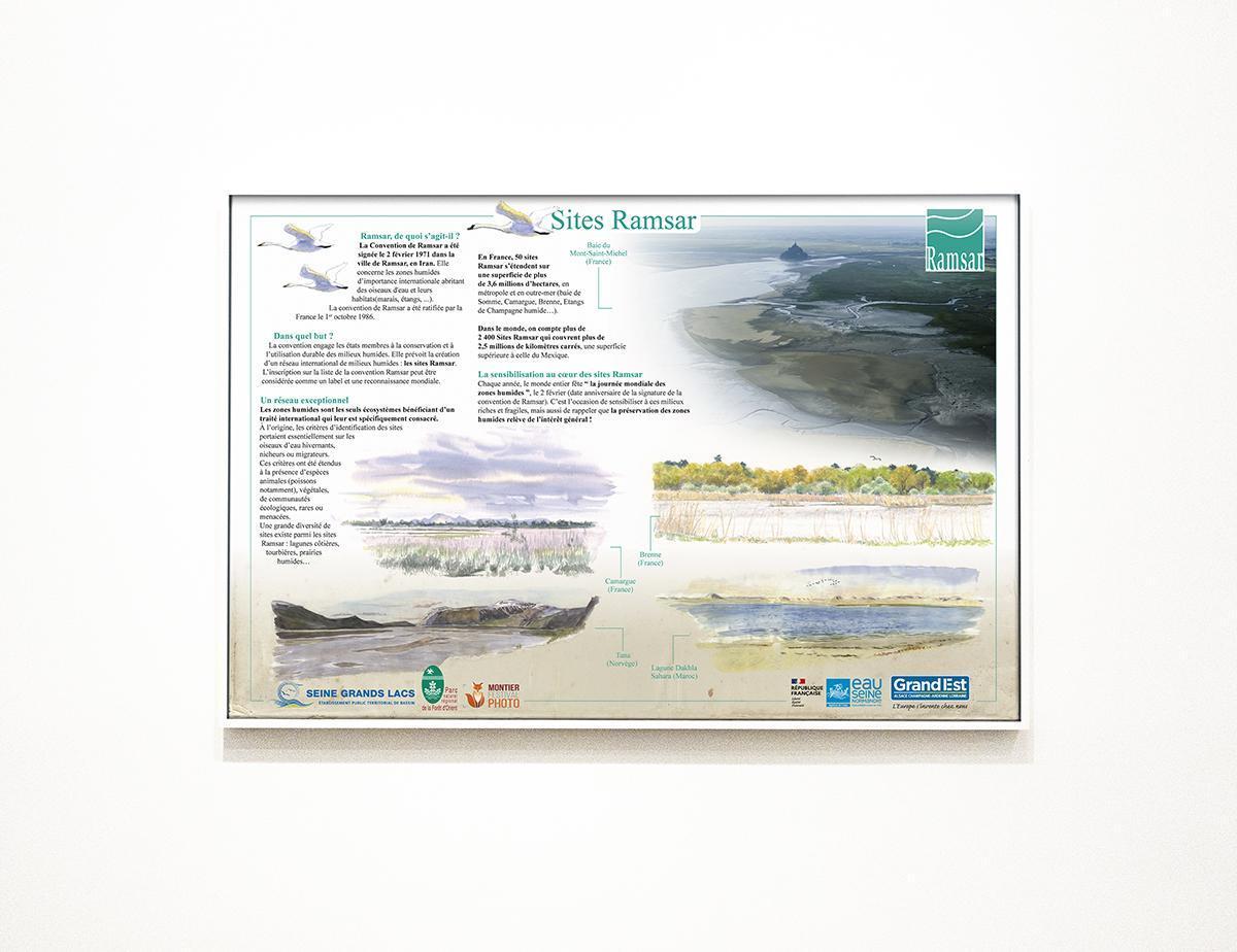 Exposition virtuelles Zone Ramsar - Étangs de Champagne humide