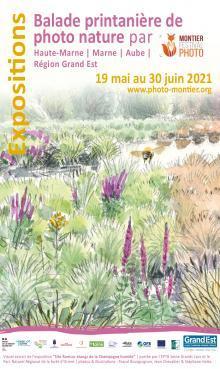 Balade printanière de photo nature par le Festival photo de Montier-en-Der