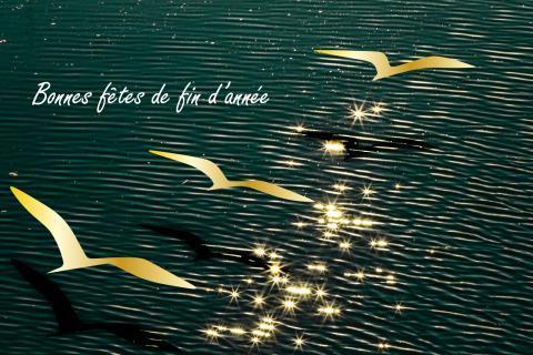 L'EPTB Seine Grands Lacs vous souhaite de bonnes fêtes de fin d'année.