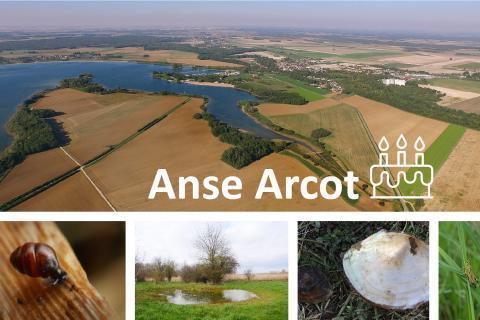 Anse Arcot - 3 ans APPB- EPTB Seine Grands Lacs