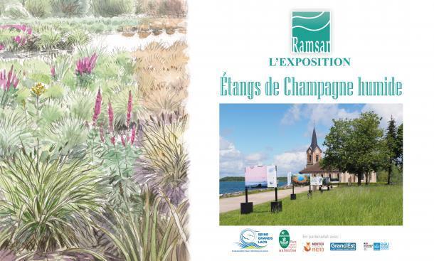 "Exposition Zone Ramsar ""Étangs de Champagne humide"" - EPTB Seine Grands Lacs"